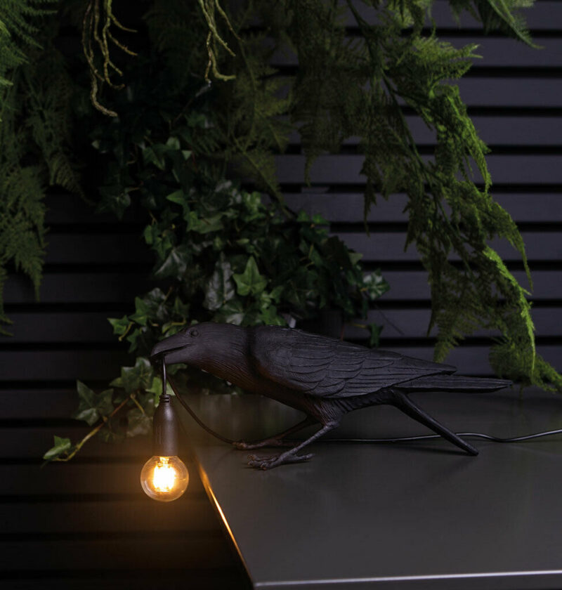 Product Of The Week: A Beautiful Bird Lamp